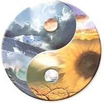 Mirroring Yin and Yang