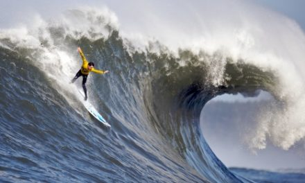 December 2016 Predictions: Surfing a Tidal Wave