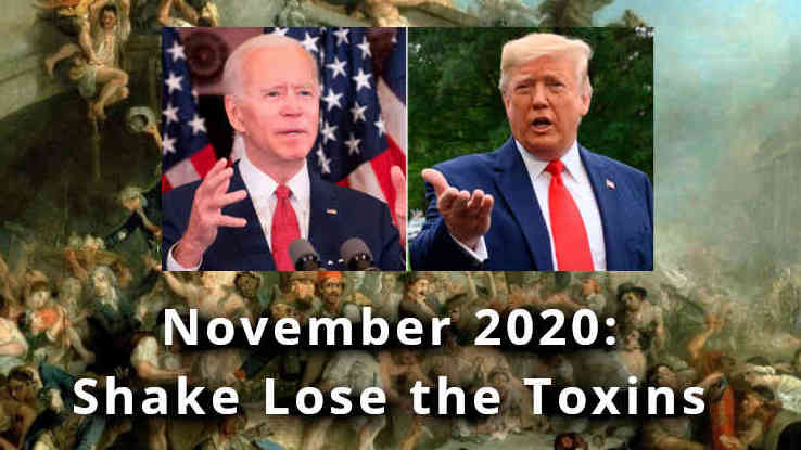 November 2020 Predictions: Shaking Loose the Toxins