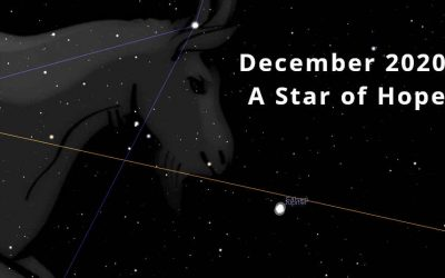 December 2020: A Star of Hope